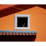Cairano_album_fotografico_alta_Pagina_70
